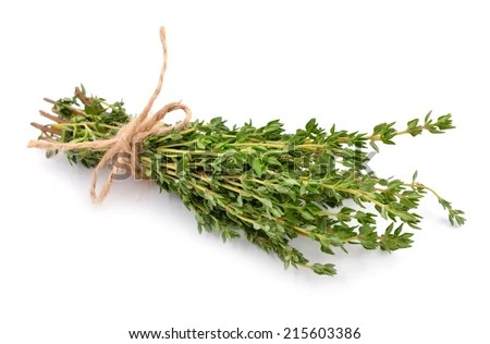 Thyme isolated on white background.