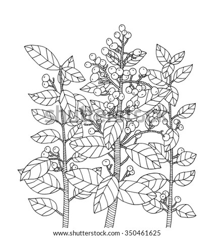 Royalty-free Forest bush branch with leaves, wild