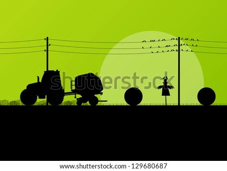 agriculture tractor making hay