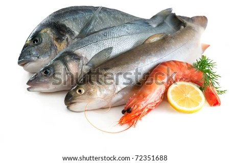 stock photo : Sea food