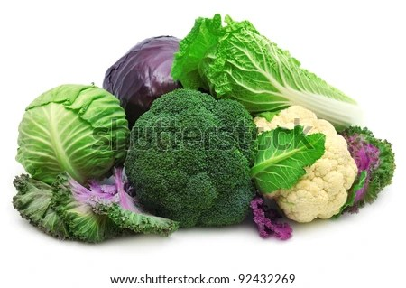 stock photo : collection cabbages isolated on a white background