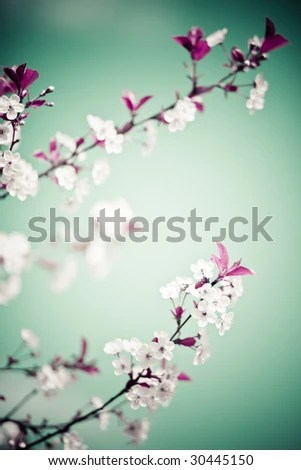 stock photo : Abstract colored bright floral ornate background with flowers