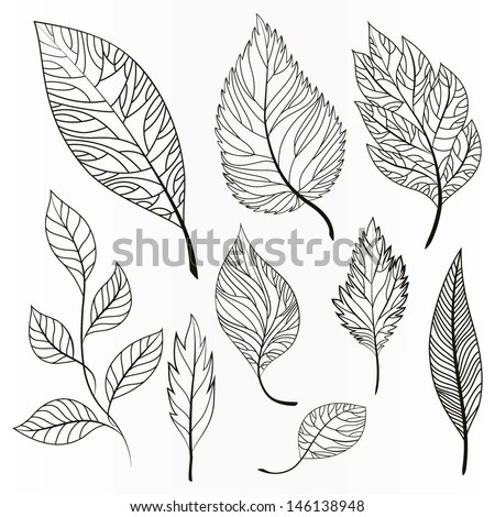 Vector Images, Illustrations and Cliparts: Vector set of