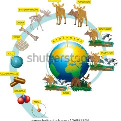 Hydrosphere Lithosphere Atmosphere Diagram Single Phase Motor With Capacitor Forward And Reverse Wiring The Hierarchy Of Biological Organization. Stock Vector 126853934 : Shutterstock