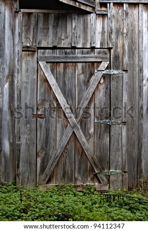 Beautiful Old Rustic Wooden Barn Door With Green Weeds