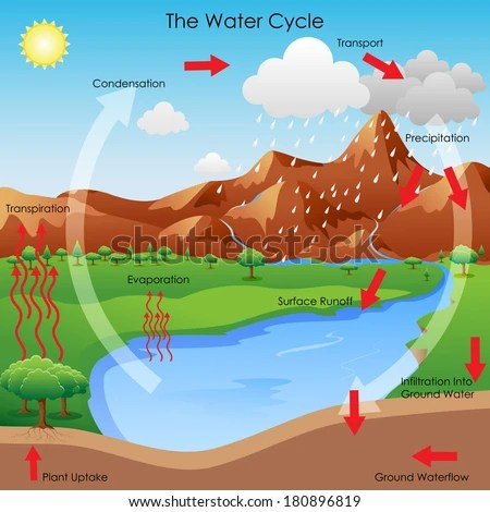 water cycle diagram free