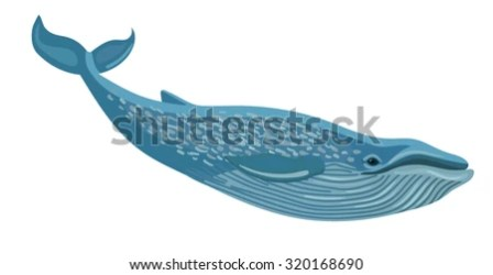 Blue Whale Transparent Png Blue Whale PNG Stunning free transparent png clipart images free download