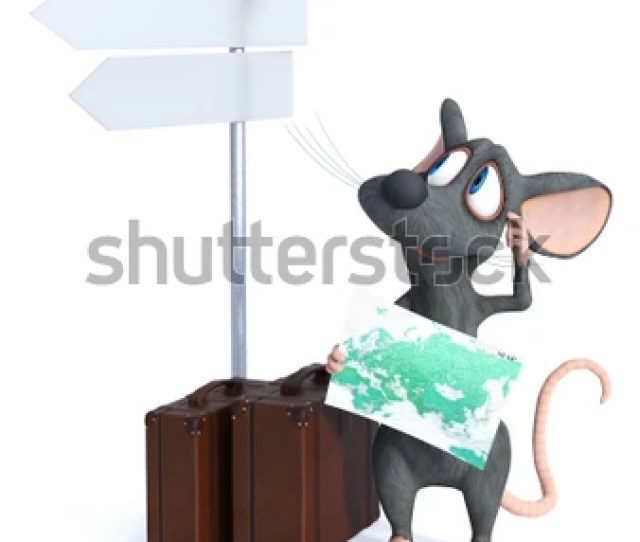 3d Rendering Of A Cute Smiling Cartoon Mouse Holding A Map And Looking At A Blank