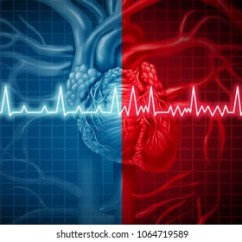 Healthy Food Diagram 2 Way Wiring Switch Cardiac Images, Stock Photos & Vectors | Shutterstock