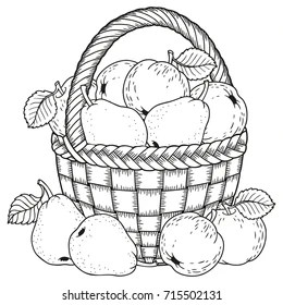 basket coloring page # 61