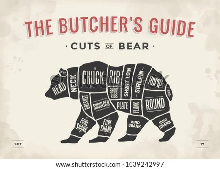black bear diagram 2000 dodge neon stereo wiring royalty free stock illustration of cut meat set poster butcher scheme vintage