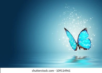 Black Silver Glitter Wallpaper Glowing Butterfly Images Stock Photos Amp Vectors