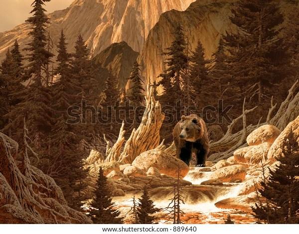brown bear rocky mountains