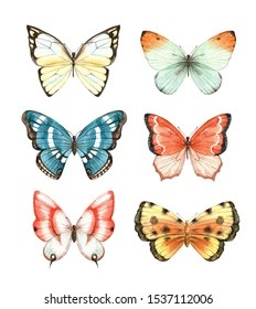 Butterfly Images Clip Art : butterfly, images, Butterfly, Clipart, Images,, Stock, Photos, Vectors, Shutterstock
