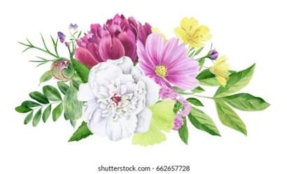 Flower Clipart Images Stock Photos & Vectors Shutterstock