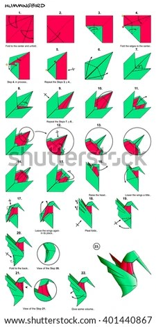 origami hummingbird diagram instructions gfci receptacle wiring royalty free stock illustration of animal bird steps