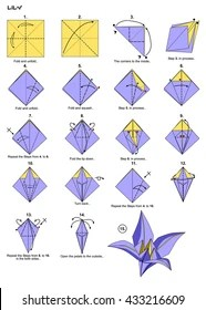 origami hummingbird diagram instructions wall light wiring uk royalty free stock illustration of animal bird flower lily steps