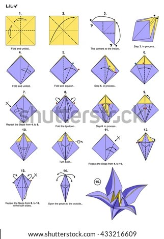 origami flower diagram in english 7 blade wiring royalty free stock illustration of lily instructions steps