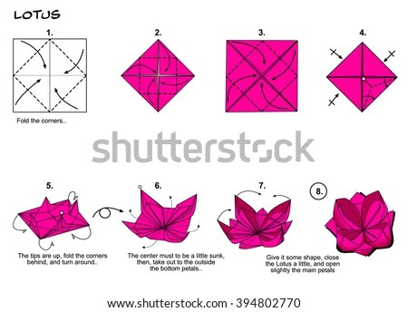 origami flower diagram in english waterfall development traditional lotus instructions stock steps paper folding art