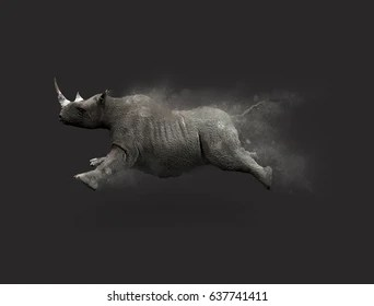 3d rhino images stock