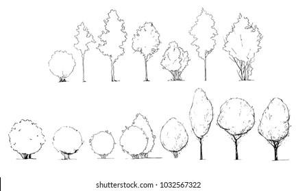 Architectural Tree Symbols Images, Stock Photos & Vectors