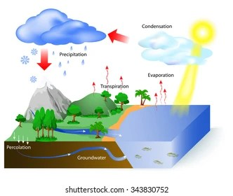 water cycle stock illustrations