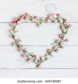 heart shaped flower images