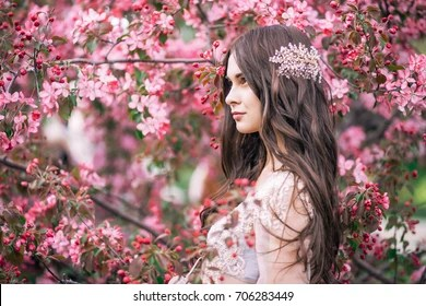 Cherry Blossoms Falling Stylized Wallpaper Cherry Blossom Transparent Images Stock Photos Amp Vectors