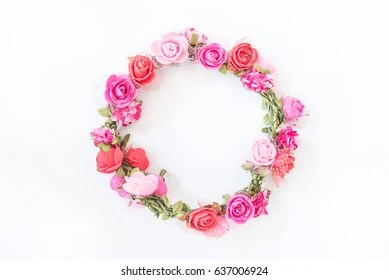 flower and circle stock