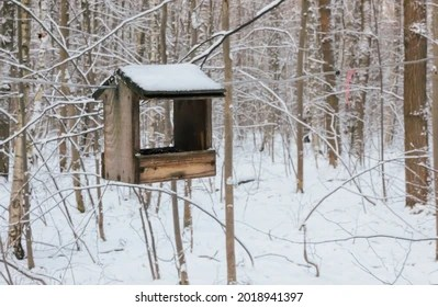 I added a custom touch to the front blind panel by snipping out a small window in order to make it easier and safer for my son to shoot. Forest Feeder Images Stock Photos Vectors Shutterstock