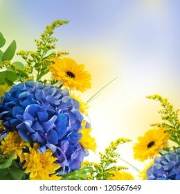 yellow flowers background images