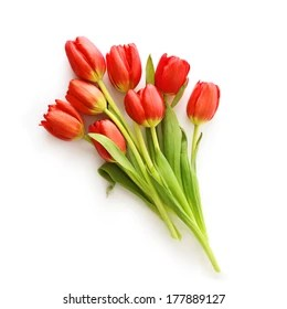 tulips bouquet images stock