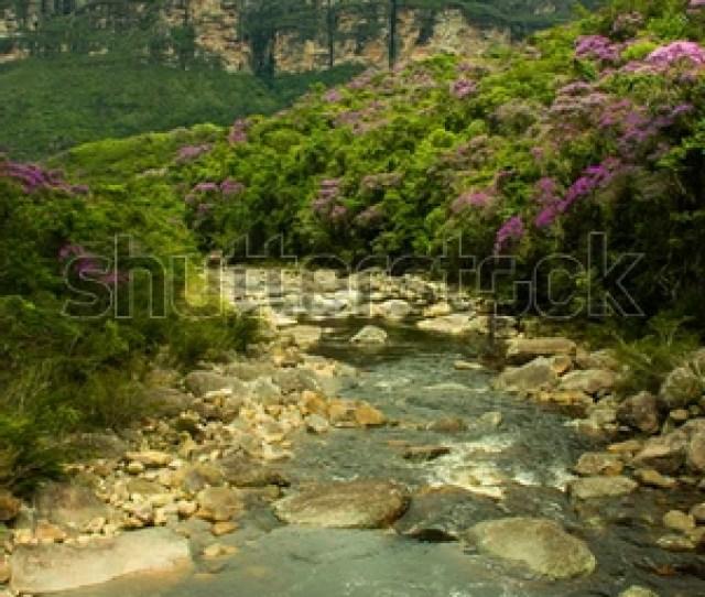 Chapada Diamantina Beautiful River On Pati Valley