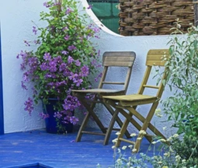 Clematis In Container On Decking In An Urban Garden With Seating