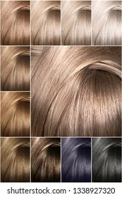 hair color chart images