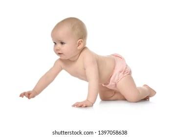 baby crawl images stock