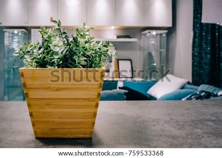 artificial plants for living room sexy decoration stock photo edit now in the