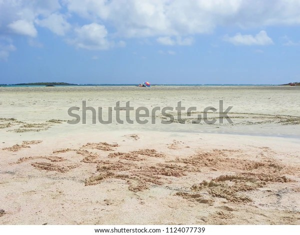 Elafonisi Beach Pink Sand Crete Greece Parks Outdoor Stock Image 1124077739