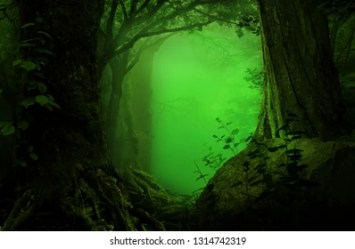 Enchanted Forest Background Images Stock Photos & Vectors Shutterstock
