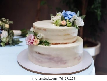 Two Tiered Cake Images Stock Photos Vectors Shutterstock