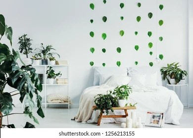 Jungle Bedroom Images Stock Photos Vectors Shutterstock
