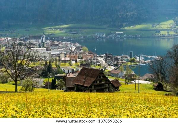 idyllic mountain village arth