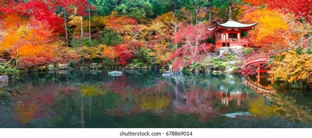 Fall Leaves Road Wallpaper Japanese Garden Images Stock Photos Amp Vectors Shutterstock