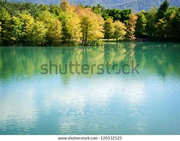 Lakeside Bald Cypress Villa Home Hualien Stock Photo Edit