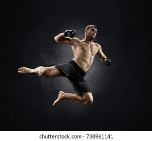 fight mma images stock