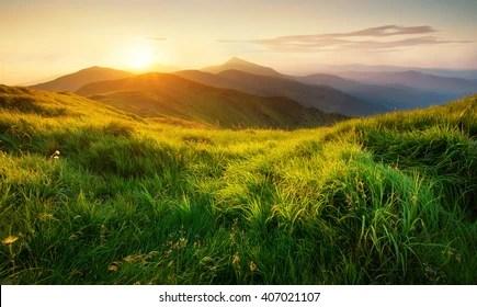 natural images stock photos