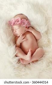 newborn baby girl images