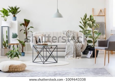 living room pouf color ideas grey armchair botanic stock photo edit now and in interior with beige sofa near plants table