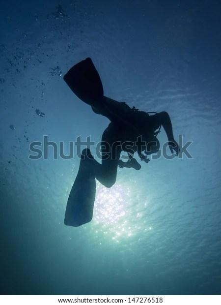 Pulau Satonda Reef Indonesia November 16 Stock Photo Edit Now 147276518