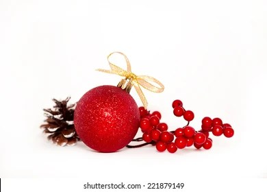 christmas red berries images